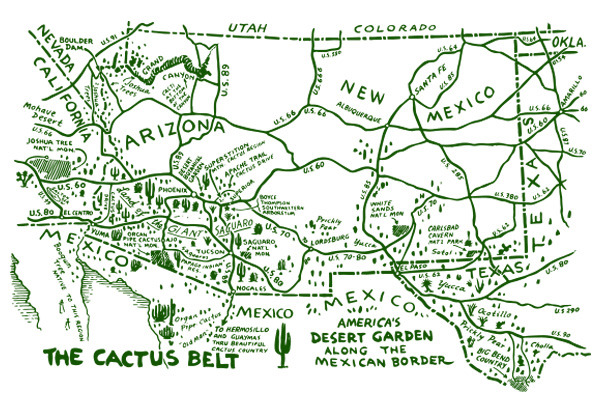 cactus_map.jpg