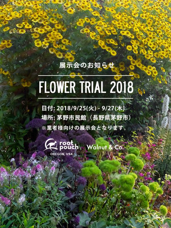 exhibition_flowertrial_2018.jpg