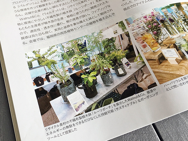 greenjoho_0003.jpg