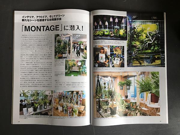 greenjoho_002.jpg