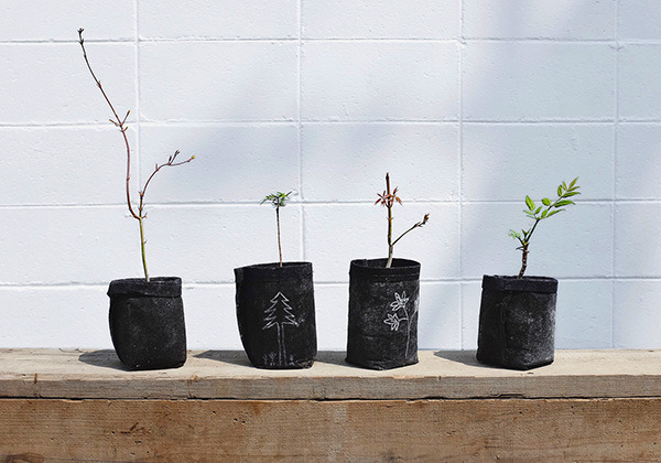 planting_600.jpg
