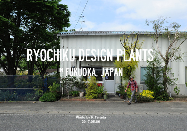 RYOCHIKU DESIGN PLANTS