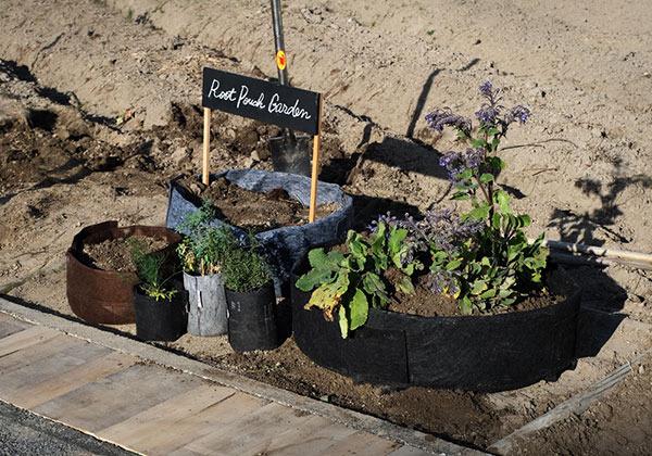 rootpouch_garden_001_600.jpg