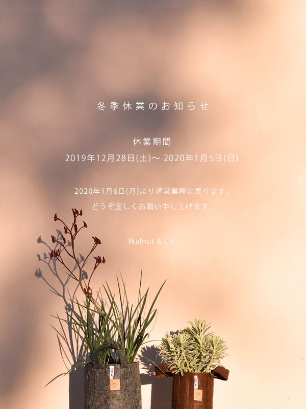 winter_holiday_2019.jpg